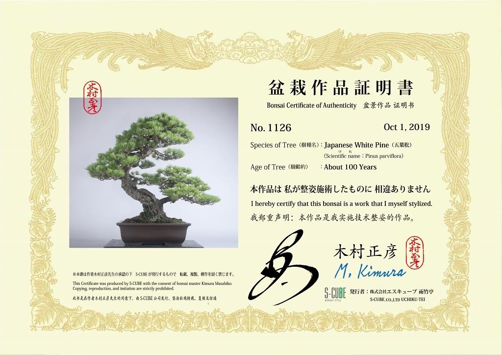 kimura1126