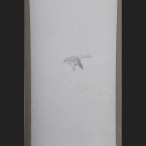 「飛鶯図」 渡辺南岳筆